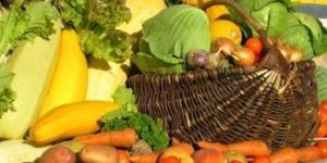 Расписание продовольственных ярмарок на 2013 год