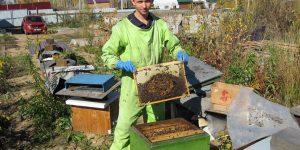 В Иркутске создали союз пчеловодов