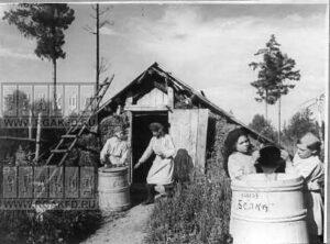 """Работницы пасеки колхоза """"Белка"""" Тасеевского района сливают мед в бочки и готовят его к отправке."""