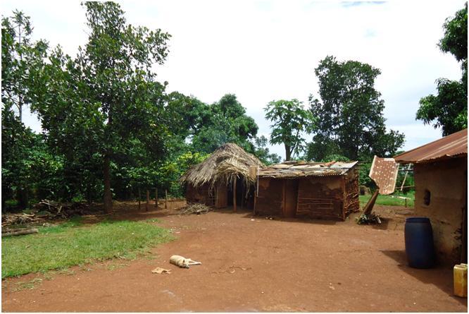Фото 10. Дома-мазанки - основное жилище для жителей страны