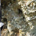 Каменное масло (Саяны)