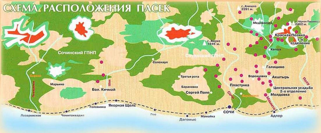 """Карта пасек """"Краснополянского"""""""