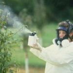 Пестициды убивают насекомых, новое исследование