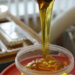 Натуральный мёд с пасеки Старчевских