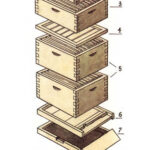 О двухкорпусном и многокорпусном содержании пчелиных семей